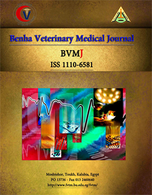 Benha Veterinary Medical Journal